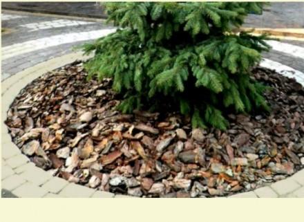 Кора-мульча від 15 грн. Камень-Каширский. фото 1