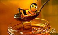 Продам мед с собственной пасики. Днепр. фото 1