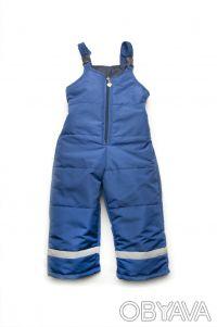 Полукомбинезон демисезонный для мальчика (синий). Днепр. фото 1