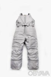 Детский зимний полукомбинезон для девочки (серый). Дніпро. фото 1