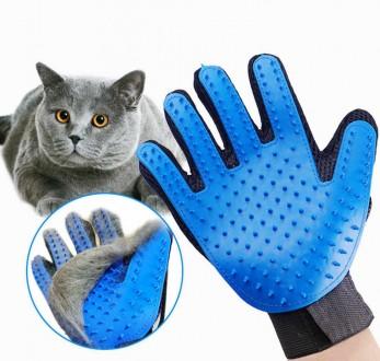 Перчатка для вычесывания шерсти домашних животных TRUE TOUCH. Харьков. фото 1