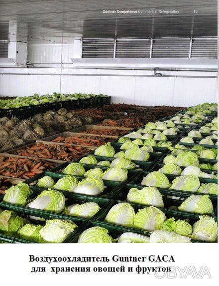 Овощехранилища. Холодильные и морозильные камеры. Группа Холодильных Компаний о. Киев, Киевская область. фото 1