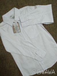 Красивая , нарядная и практичная белая рубашка с длинным рукавом и отложным воро. Белая Церковь, Киевская область. фото 7