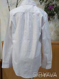 Красивая , нарядная и практичная белая рубашка с длинным рукавом и отложным воро. Белая Церковь, Киевская область. фото 5