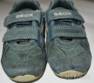ba6fd1f7c ᐈ Оригинальные кроссовки для мальчика GEOX ᐈ Никополь 200 ГРН ...