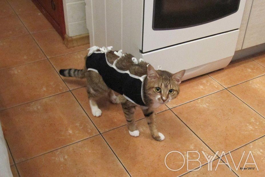 Бандаж послеоперационный для кошки