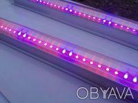 Как из светодиодной ленты сделать фитолампу