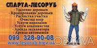 Очистка участка от поросли, кустарников и хлама. Київ. фото 1