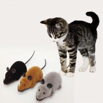 Радиоуправляемая Мышь для кошек — мышка на пульте управления для кошек. Одесса. фото 1