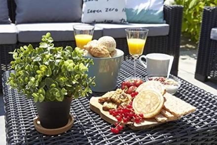 """"""" Садовый cтол California Coffe Table Allibert, Keter, Curver """"  Комфорт и удо. Ужгород, Закарпатская область. фото 10"""