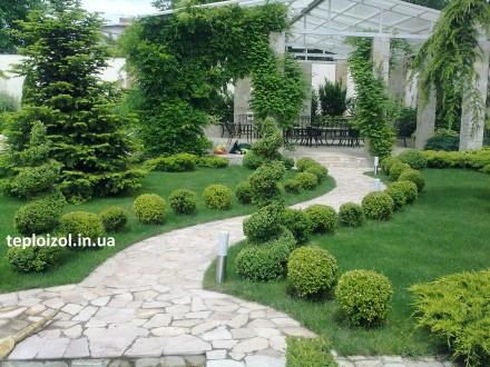 Ландшафтный дизайн и озеленение Одесса. Одесса. фото 1