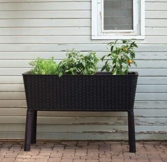 Грядка для растений, горшок Keter Easy Grow. Ужгород. фото 1