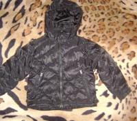 Snow dragonSns  зимняя курточка        на возраст 4года  Замеры ширина по. Киев, Киевская область. фото 2