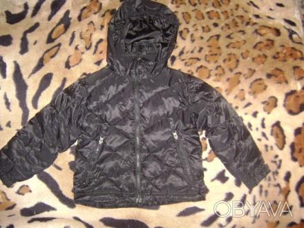 Snow dragonSns  зимняя курточка        на возраст 4года  Замеры ширина по. Киев, Киевская область. фото 1