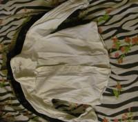 Продам рубашки для мальчика в очень хорошем состоянии по 50 грн за одну штуку ро. Киев, Киевская область. фото 4