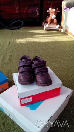 Продам демисезонные ботинки Лапси для девочки в хорошем состоянии. Киев, Киевская область. фото 1