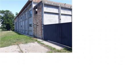 Продається склад 1280 м. кв.. Олександрія. фото 1