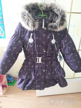 В     пальто    330 грамм утеплителя ISOSOFT,    расчитан о    на холодную зиму.. Чернигов, Черниговская область. фото 1