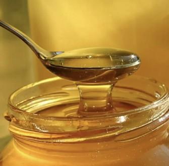 Продам майский мед. Запорожье. фото 1
