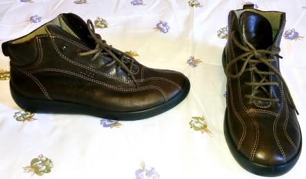 Женские ботинки Ecco (Дания) - натуральная кожа, 37 размер. Киев. фото 1