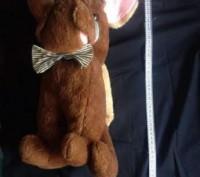 """Продам мягкую игрушку """"Хмурый бульдожек"""".Состояние б-у отличное,размер 37х14 см.. Запорожье, Запорожская область. фото 3"""