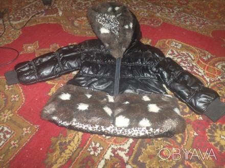 Продам б/у курточку на девочку в хорошем состоянии. Длина по спинке 42см, рукав . Запорожье, Запорожская область. фото 1