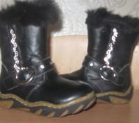 Кожаные зимние сапоги, производитель Украина, почти новые, носились мало, носки . Киев, Киевская область. фото 2