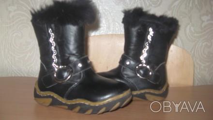 Кожаные зимние сапоги, производитель Украина, почти новые, носились мало, носки . Киев, Киевская область. фото 1