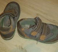 Продам осенние туфли-кроссовки кожаные р.24 в хорошем состоянии. Киев, Киевская область. фото 3