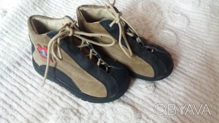 Продам демисезонные ботинки Pepina Ricosta(оригинал) на мальчика,р.24,по стельке. Чернигов, Черниговская область. фото 1