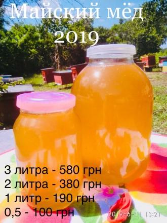 Майский мёд 2019, экологически чистый , домашний. Днепр. фото 1