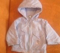 Демисезонная курточка, теплая. Длина курточки-35см.; ширина по спинке-30см.; . Запорожье, Запорожская область. фото 2