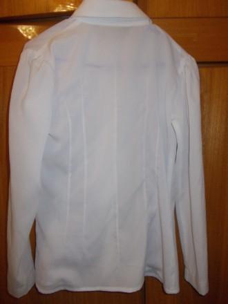 Блузка рубашка детская светлая на 6-7лет ,плечи-33 см,длинна-53см,пог-38см.,рука. Полтава, Полтавская область. фото 5