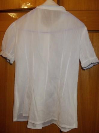 Блузка рубашка детская светлая на 6-7лет черные пуговки,в хорошем состоянии,плеч. Полтава, Полтавская область. фото 6