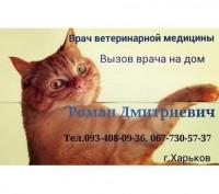 Кастрация  кота О93-4О8-О9-З6.. Харьков. фото 1