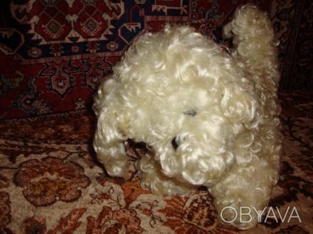 Продам собаку мягкую игрушку, в хорошем состоянии. 300 грн. Дніпро, Дніпропетровська область. фото 1