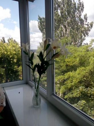 Сдам квартиру в центре города. Запорожье. фото 1