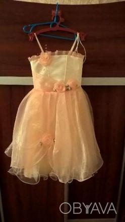 Платьице в очень хорошем состоянии для Вашей принцессы 3-4 лет.Одевалось всего д. Черкассы, Черкасская область. фото 1