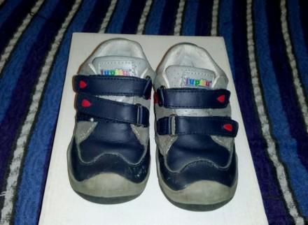 Ботинки кроссовки детские lupilu кожаные б/у в отличном состоянии. Світловодськ. фото 1