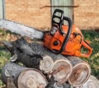 Недорого! Обрезка деревьев, спилить ветку, убрать дерево. Автовышка. Киев. фото 1
