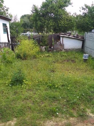 2-х комнатная квартира на Победе, ул.Маршала Рыбалко,возле училища.Есть небольшо. Александрия, Кировоградская область. фото 9