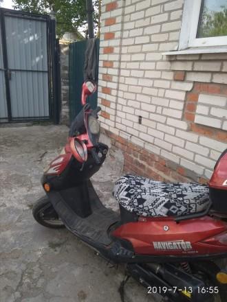 Продам скутер навигатор состояние-сел и поехал,49,9 куб.тел 0979837590 Юрий Алек. Богодухов, Харьковская область. фото 2