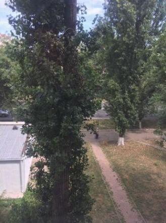 #0-10640 Сдается 2-х комнатная квартира на ул. Королева . Ориентир Киевский исп. Киевский, Одесса, Одесская область. фото 10