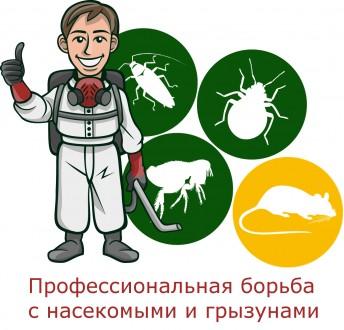 Уничтожим насекомых и грызунов Днепропетровск.. Днепр. фото 1