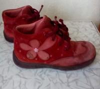 Ботиночки.Кожаные ,подошва целая.По стельке 16 см.. Чернигов, Черниговская область. фото 2