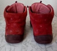 Ботиночки.Кожаные ,подошва целая.По стельке 16 см.. Чернигов, Черниговская область. фото 4