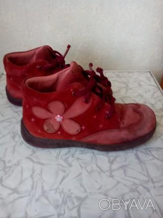 Ботиночки.Кожаные ,подошва целая.По стельке 16 см.. Чернигов, Черниговская область. фото 1