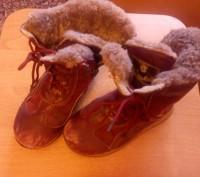 Сапожки зимние тёплые кожаные для девочки 27 размер. По стельке -17 см. Бордовог. Запорожье, Запорожская область. фото 2