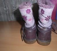 Продам сапожки демисезонные  тканевые Bobbi Shoes 27 р по стельке 17,5 см (она н. Харьков, Харьковская область. фото 4