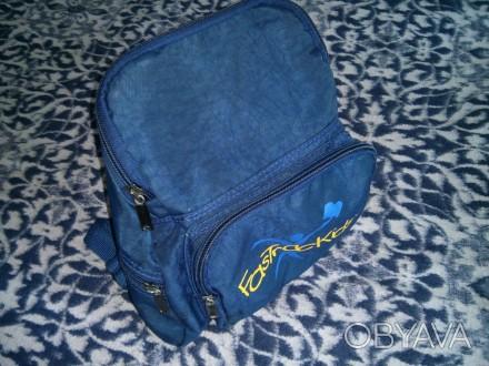 Детский рюкзак FasTracKids в идеальном состоянии. Такой рюкзак очень легкий и уд. Киев, Киевская область. фото 1
